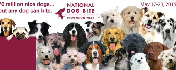 National Bite Prevention Week & Resources