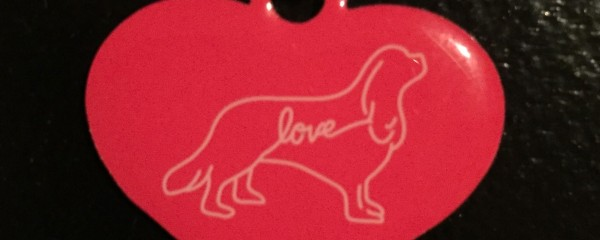 Cavalier Love Campaign